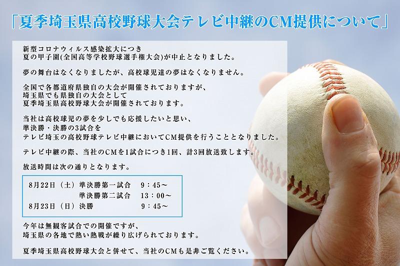 野球 埼玉 高校